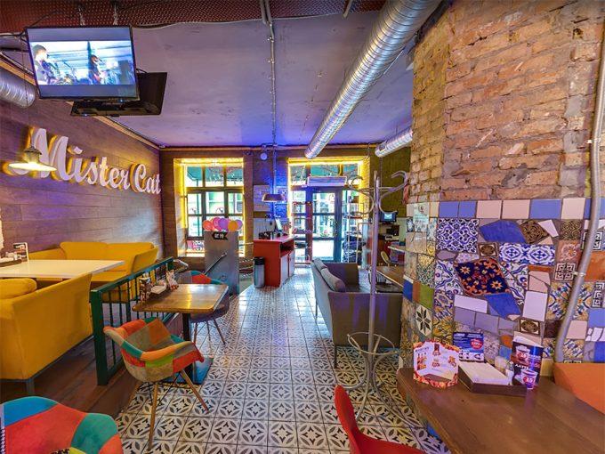 Ресторан Mister Cat Шулявка 2 - интерьер